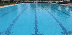 Incontri in piscina 2017