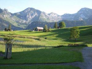Toggenburgo2009(5).jpg
